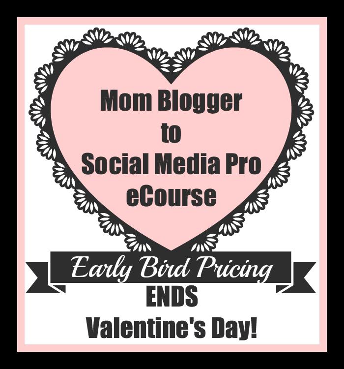 Mom Blogger Promo